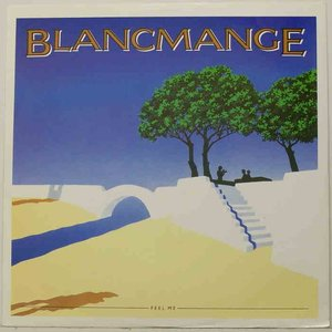 Image for 'Blancmange2'