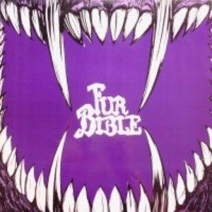 Imagem de 'Fur Bible'
