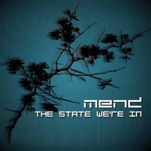 Image for 'the state we're in'