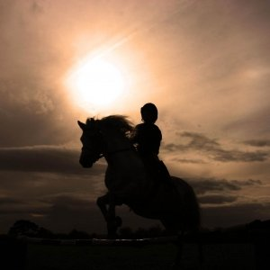 Image for 'Sunset Rider'