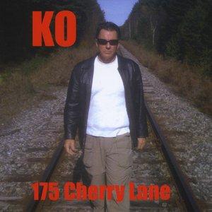 Image for '175 Cherry Lane'