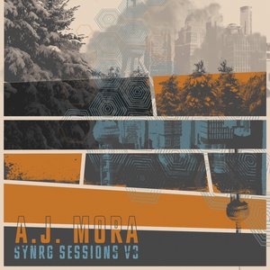 Image for 'Synrg Sessions, Vol. 3'