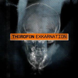 Image for 'Exkarnation'