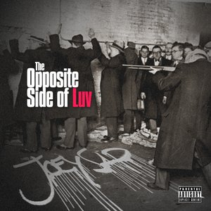Image for 'The Opposite Side of Luv'