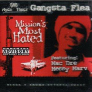 Image for 'Gangsta Flea'