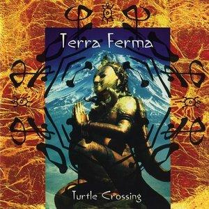 Bild für 'Turtle Crossing'