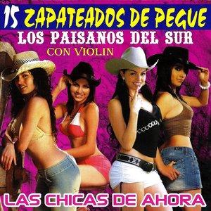 Image for '15 Zapateados De Pegue'