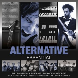 Image for 'Essential: Alternative'