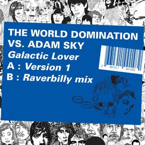Image for 'the world domination vs adam sky'