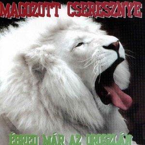 Image for 'Ébred már az oroszlán'