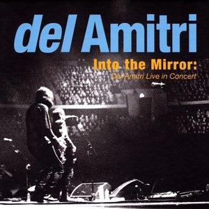 Immagine per 'Into the Mirror: Del Amitri Live in Concert'