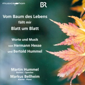 Image for 'Hummel, B.: Vocal and Piano Music'