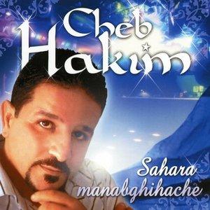 Image for 'Sahara Manabghihache'