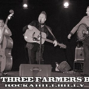 Bild för 'the three farmers boys'