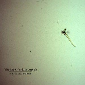 Bild für 'Spit Back at the Rain'