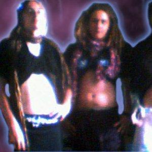Bild för 'Gute Band'