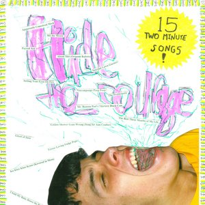 Image for 'Hide the Courage'