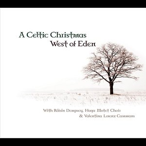 Image for 'A Celtic Christmas'