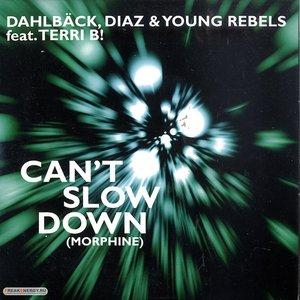 Image for 'Dahlbäck, Diaz & Young Rebels Feat. Terri B!'