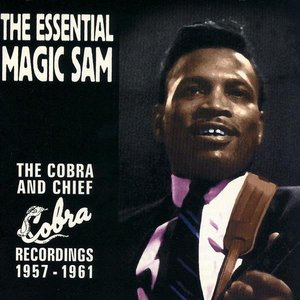 Image for 'The Essential Magic Sam'