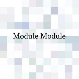Image for 'Module Module'