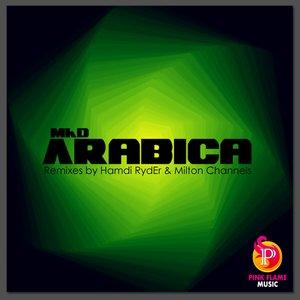 Image for 'Arabica (original mix)'