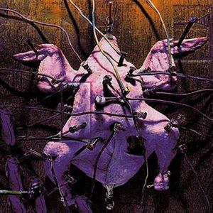 Image for 'Maximum Abduction'