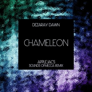 Image for 'Chameleon (Applejac's Sounds of Mecca Remix)'