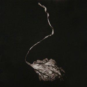 Image for 'Blood Ballet'