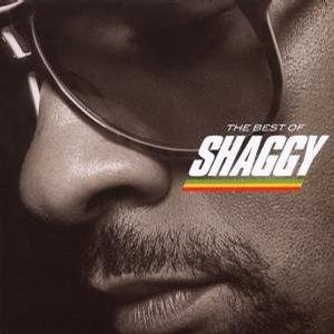 Bild für 'The Best Of Shaggy'