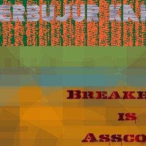 Bild för 'Breakhole is Asscore'