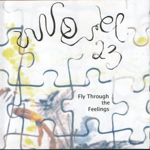 Image for 'Fly Through The Feelings'