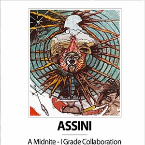 Immagine per 'Assini'