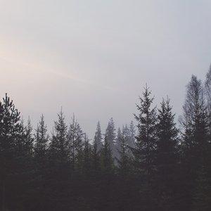 Image for 'Sмeрtь Sоzиuмa'