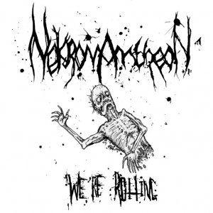 Image for 'We're Rotting'