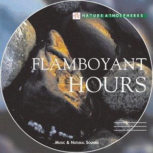 Bild für 'Nature Atmosphere: Flamboyant Hours'