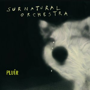 Image for 'Pluir'
