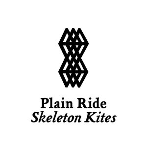 Image for 'Skeleton Kites'