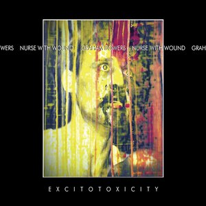 Image for 'Excitotoxicity'