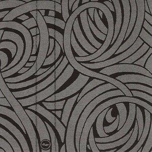 Image for 'Walking Through Black Prisms'