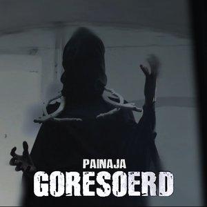 Image for 'Painaja'