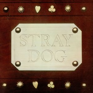 Image for 'Stray Dog'