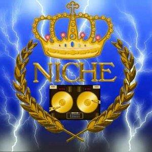 Bild för 'Niche'