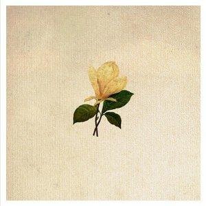 Imagen de 'The Grand Magnolias'