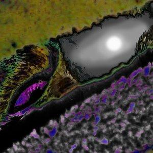 Bild för 'Further Regions [EP]'
