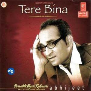 Bild für 'Tere Bina'