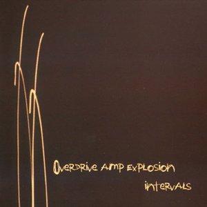 Image for 'intervals'