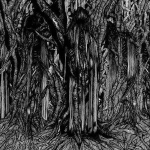 Image for 'Black 1'