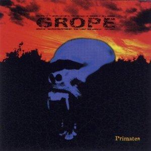 Image for 'Primates'