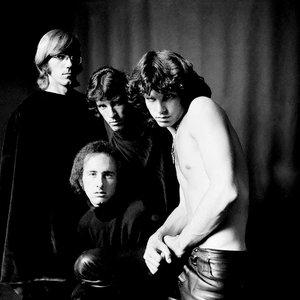 Immagine per 'The Doors'